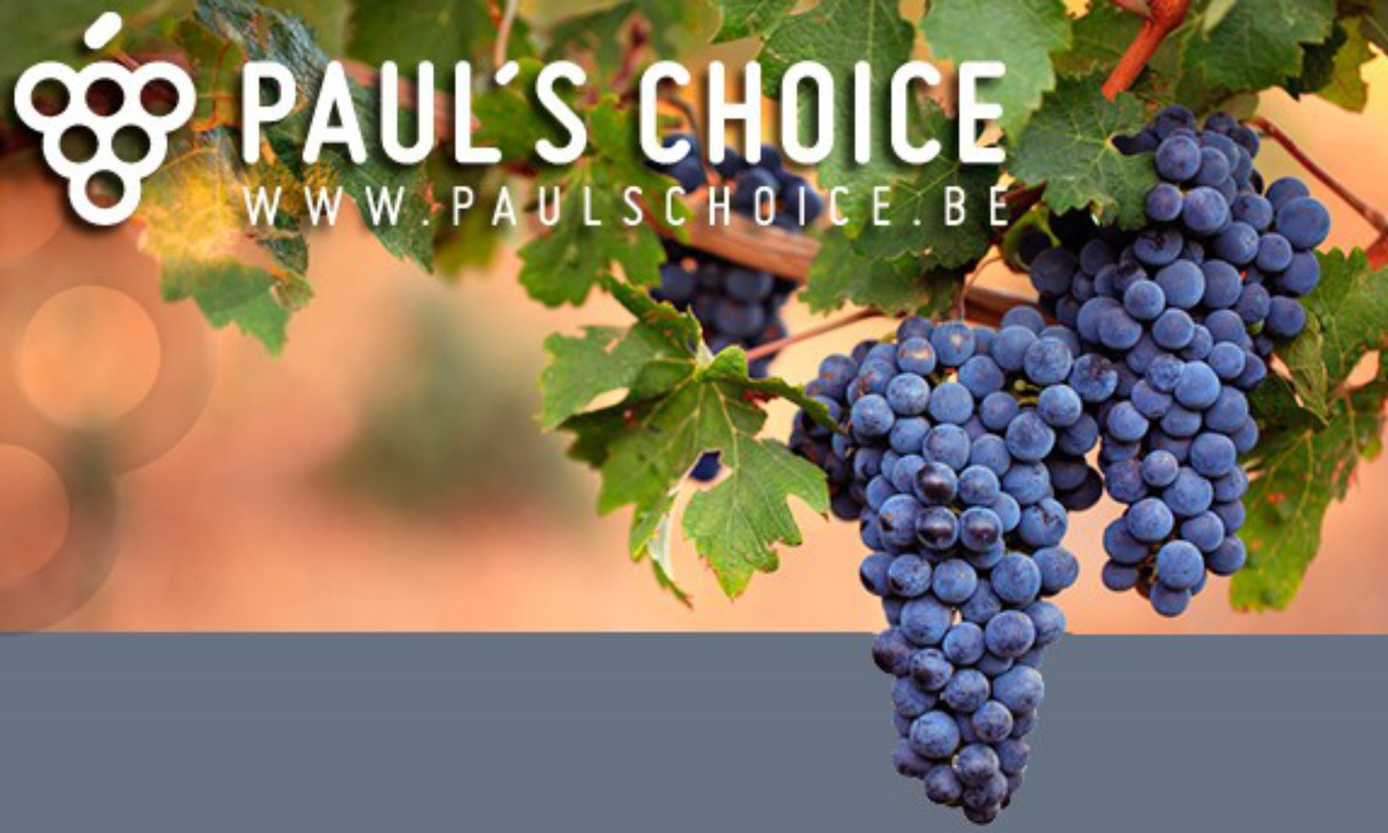 PAUL'S CHOICE